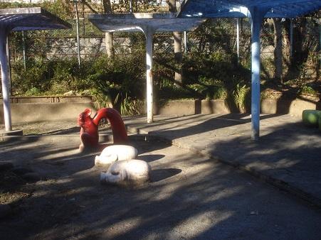 戸山東公園003.jpg