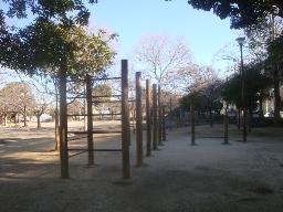 春江の森03.jpg