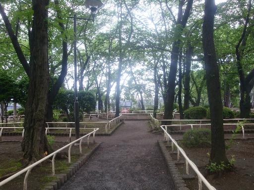権現山07.jpg