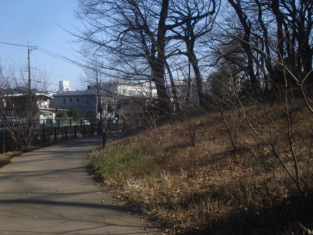 江古田公園002.jpg