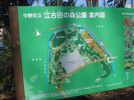 江古田公園004.jpg