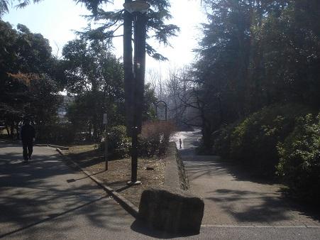 江古田公園005.jpg