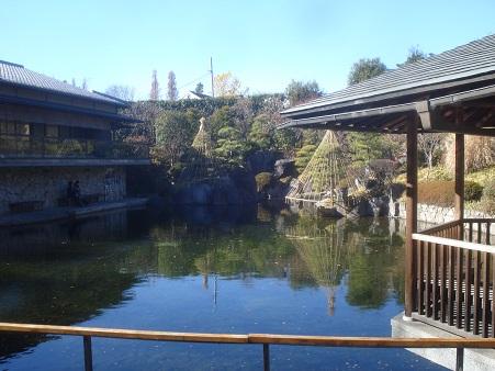 目白庭園004.jpg