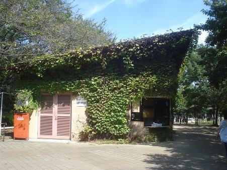 赤羽自然観察公園001.jpg
