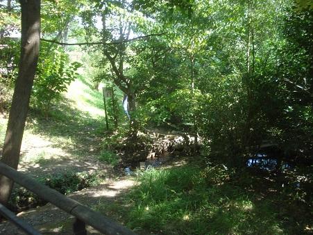 赤羽自然観察公園005.jpg