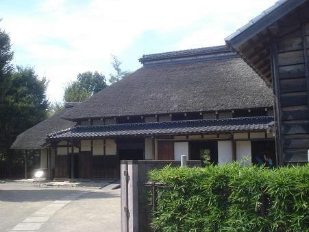 赤羽自然観察公園006.jpg