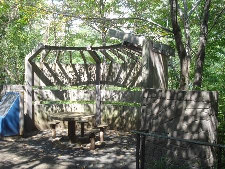 赤羽自然観察公園009.jpg