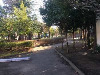 くつろぎの家公園003.jpg