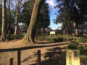 たかまつ憩いの森002.jpg