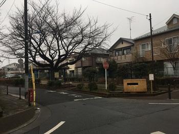 なかみや児童遊園001.jpg