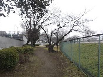 にたば児童遊園001.jpg