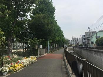 べんてんばし公園001.jpg