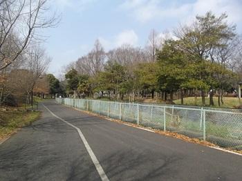 みさと公園002.jpg
