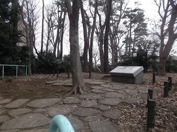 みやのくぼの森緑地002.jpg