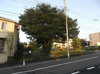 やとじま公園001.jpg