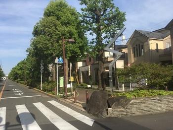 ゆりのき公園001.jpg