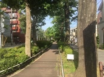 ゆりのき公園002.jpg