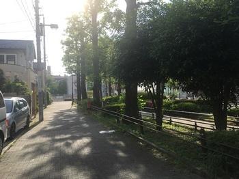 ゆりのき公園003.jpg