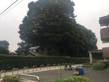 アーべイン成城001.jpg