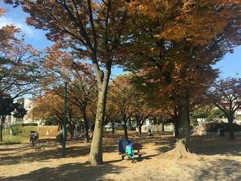 一ツ家中央公園005.jpg