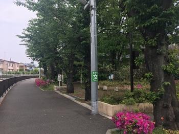 一本橋公園001.jpg
