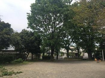 一本橋公園005.jpg