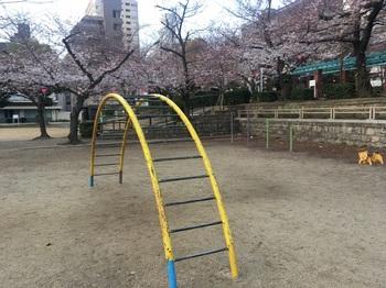 上汐公園006.jpg
