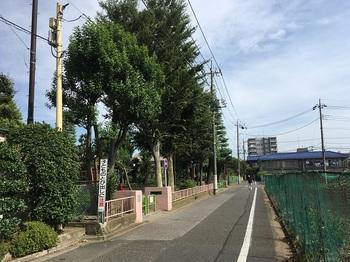 上石神井東公園001.jpg