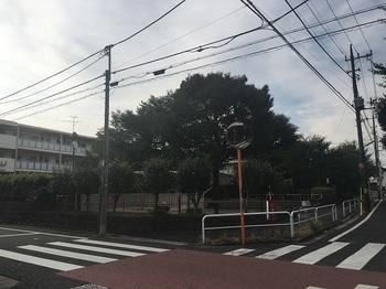 上祖師谷広場001.jpg