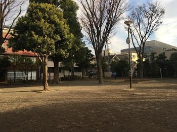 下小田中公園003.jpg