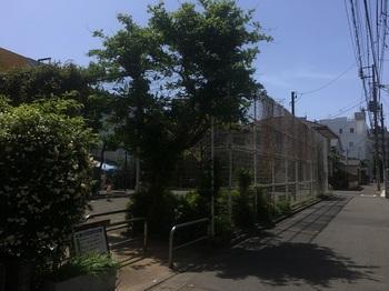 世田谷四丁目公園001.jpg