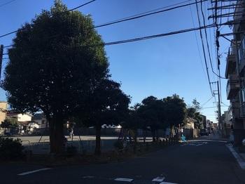 中島公園001.jpg