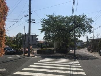 中町二丁目公園001.jpg