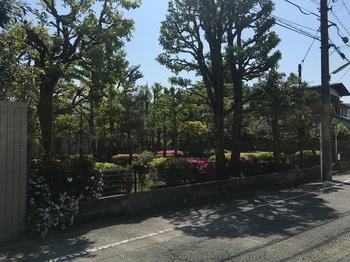 中町南公園001.jpg