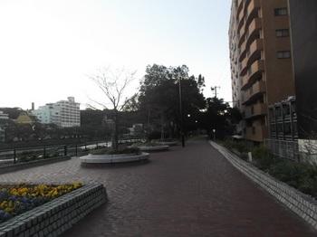 京橋川006.jpg