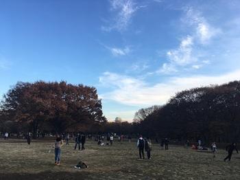代々木公園001.jpg
