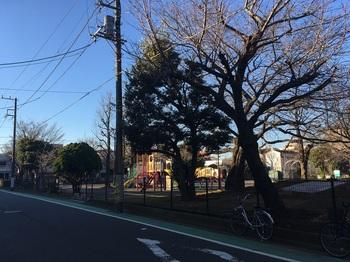 伊勢町第一公園001.jpg