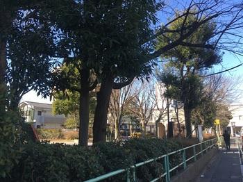 伊藤谷公園001.jpg