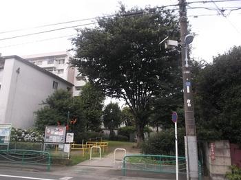住吉公園001.jpg