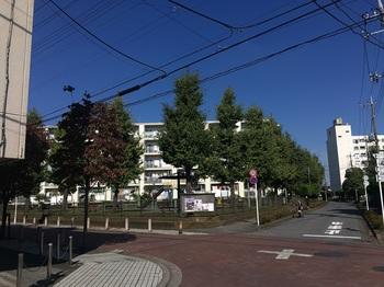 六ツ木町アパート南001.jpg