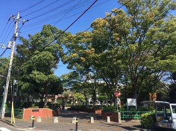 六木公園001.jpg