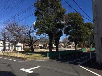 前谷公園001.jpg