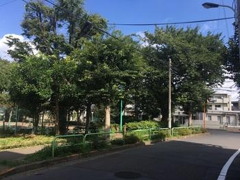 北町なかよし公園001.jpg