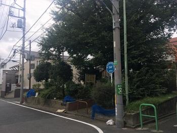 南田柄緑地001.jpg