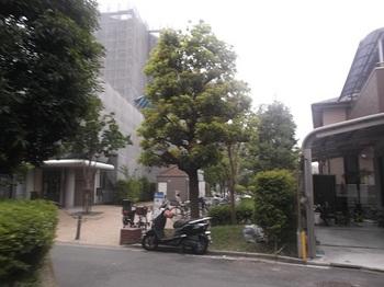 南篠崎五丁目公園001.jpg