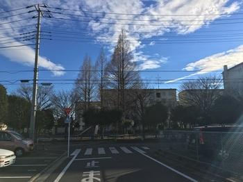 南花畑公園001.jpg