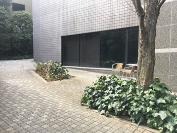 南青山三丁目緑地002.jpg