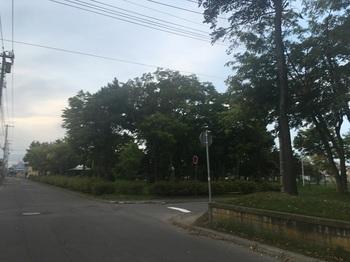 双葉一号公園001.jpg