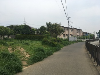 和泉緑地001.jpg