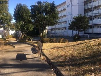 和田掘公園002.jpg